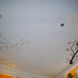 Deckenmalerei in Wilthen Villa Vital